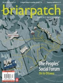 briarpatch magazine cover
